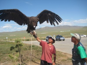 a black vulture poses with his owner at a tourist site