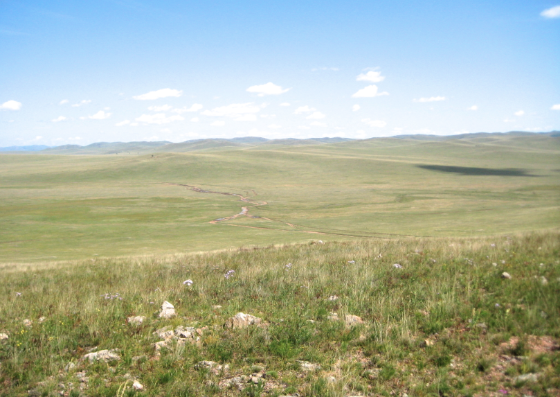 the steppes are grasslands without trees or desert but with some washed out impassable trail-roads you can barely see in this photo